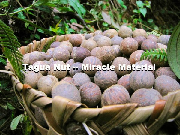 tagua-nut-photo-with-text